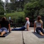 jensen benevolat niyamas yoga africa ngo